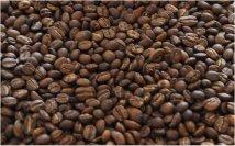 家中剛烘焙過的咖啡豆